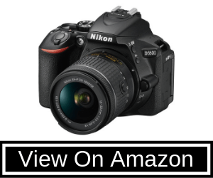 Nikon 1576 D5600 DX-Format Review